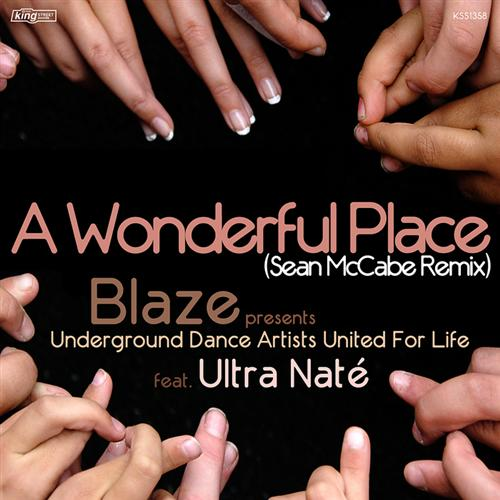 Blaze Presents UDAUFL Featuring Ultra Naté - Wonderful World